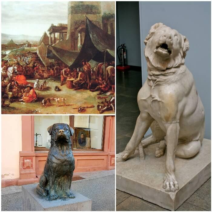 Origen y antecedentes del rottweiler