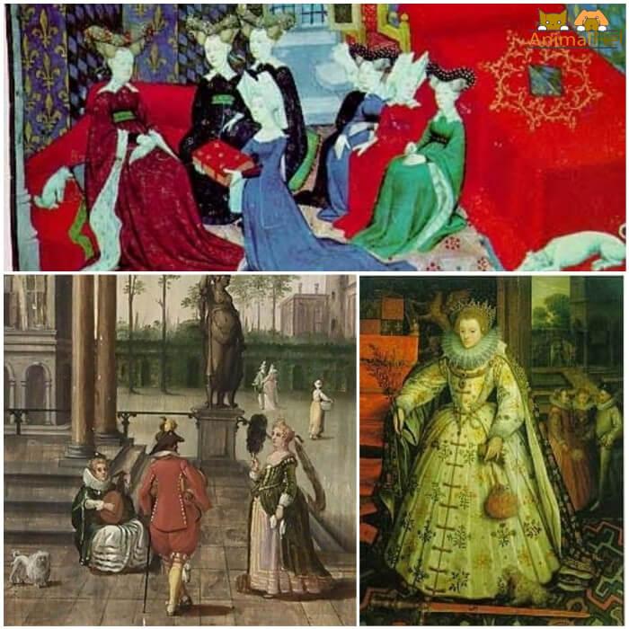 bichones en pinturas de la realeza y la nobleza