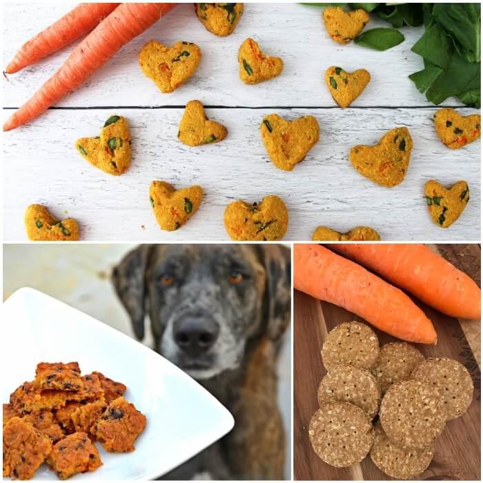 perro mirando un plato de galleticas de zanahoria