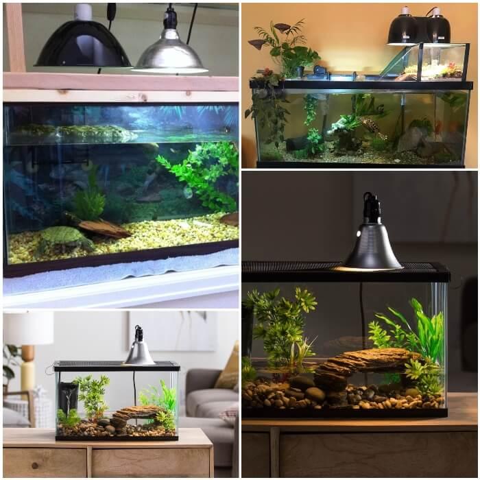 acuario con sistema de bombillas instalado