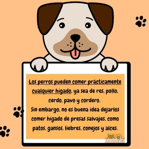 mensaje sobre los perros y el hígado