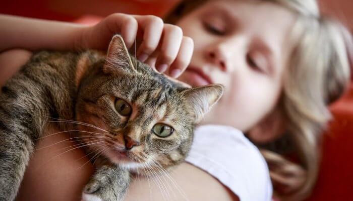 niña cargando y acariciando un gato